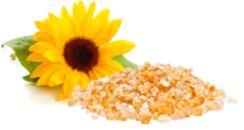 Easyliance Sunflower